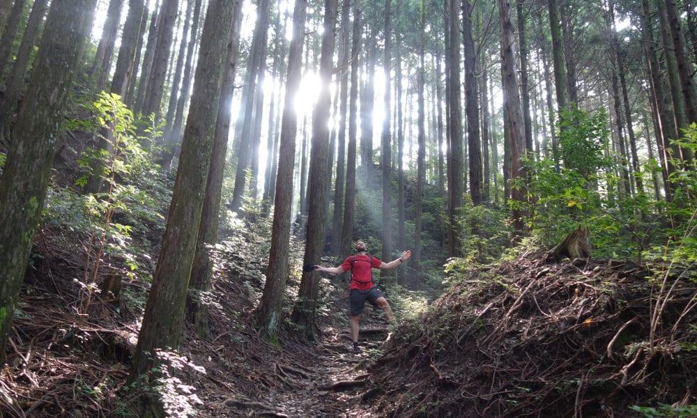 05-cammino-kumano
